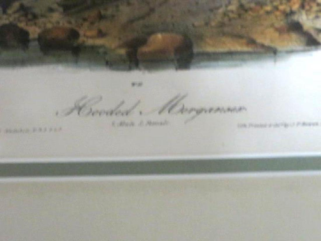 J.J. Audubon. Octavo. Hooded Merganser No.413 - 2