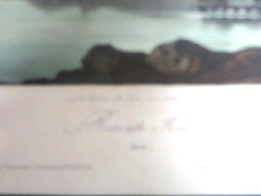 J.J. Audubon. Octavo. Roseate Tern No.437 - 2