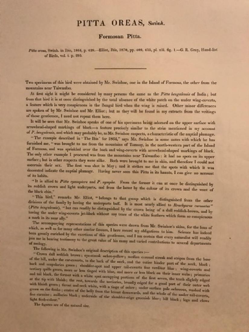 J. Gould Lithograph: Waxen Chatterer - 4