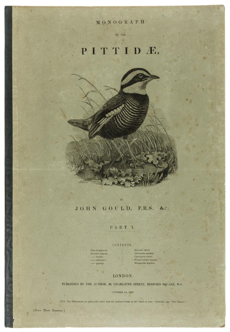 Birds.- Gould (John) Monograph of the  Pittidae, part 1