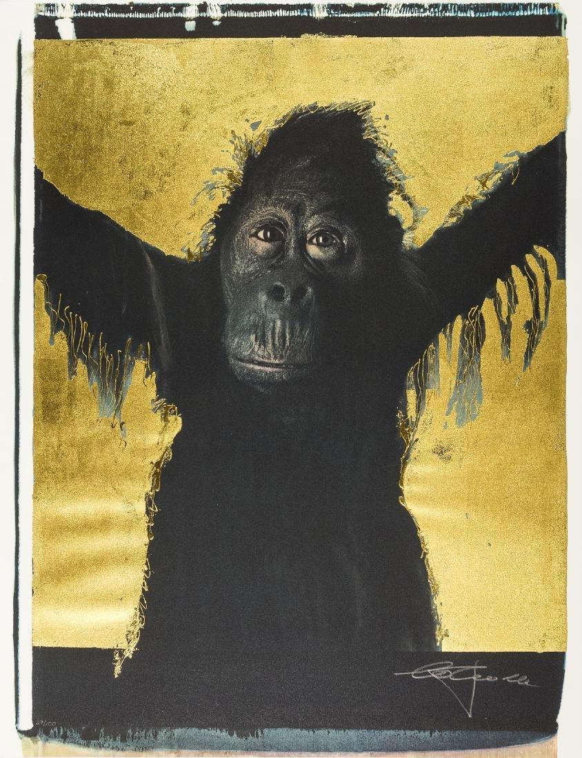 δ Werner Pawlock (b.1953)  Gorilla