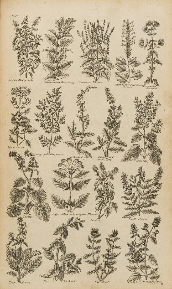Herbal.- Hill (John) The British Herbal: An History of