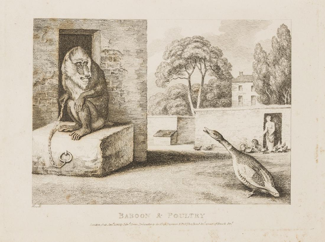 Howitt (Samuel) A New Work of Animals, Principally