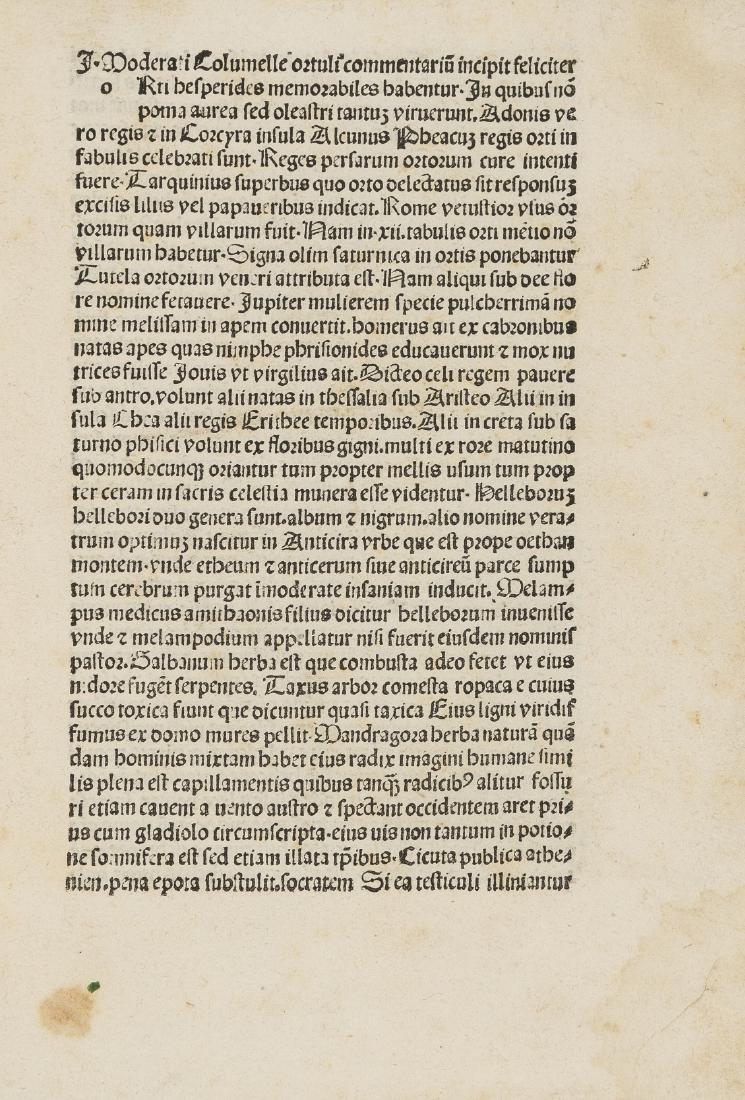 Columella (Lucius Junius Moderatus) Hortuli