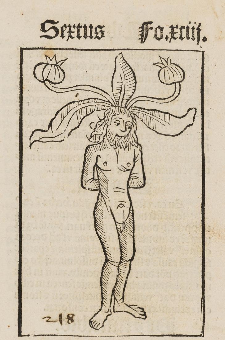 Crescentiis (Petrus de) Ruralia commoda, first