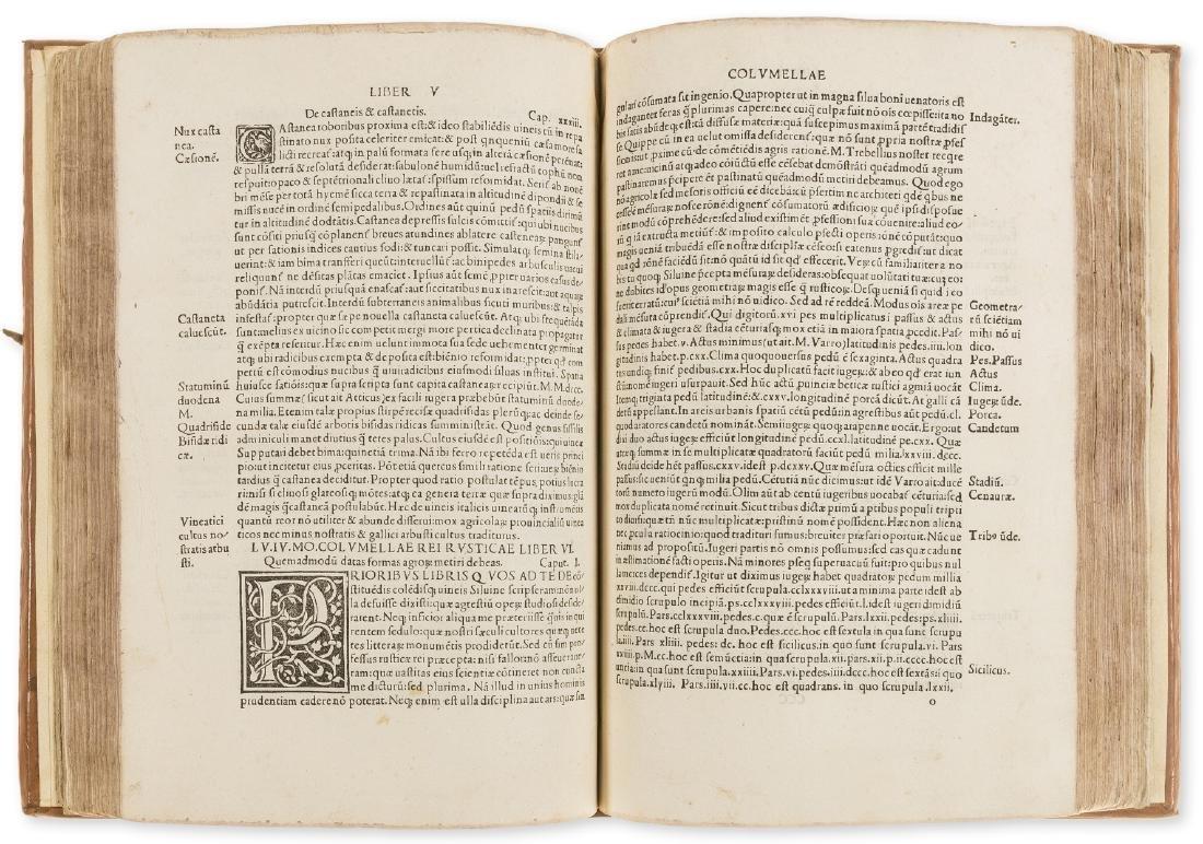 Cato (Marcus Porcius) Varro, Coulmella & Palladius.