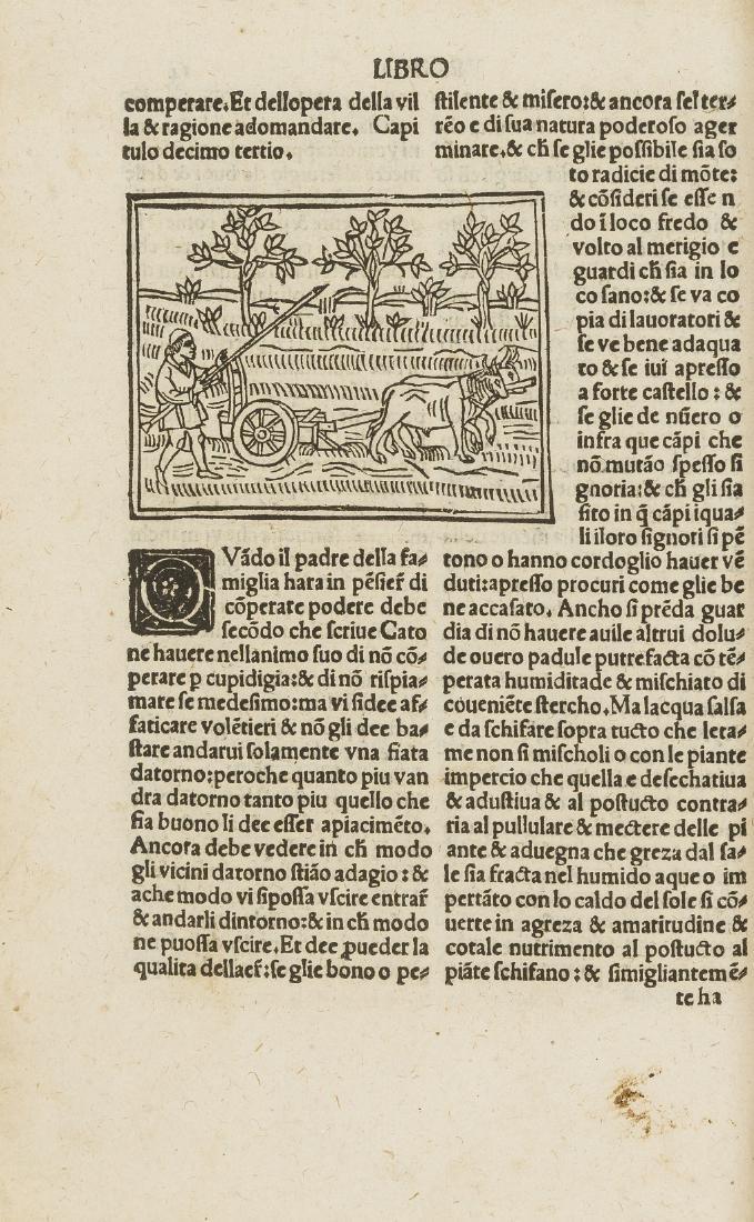 Crescentiis (Petrus de) De algricultura vulgare,