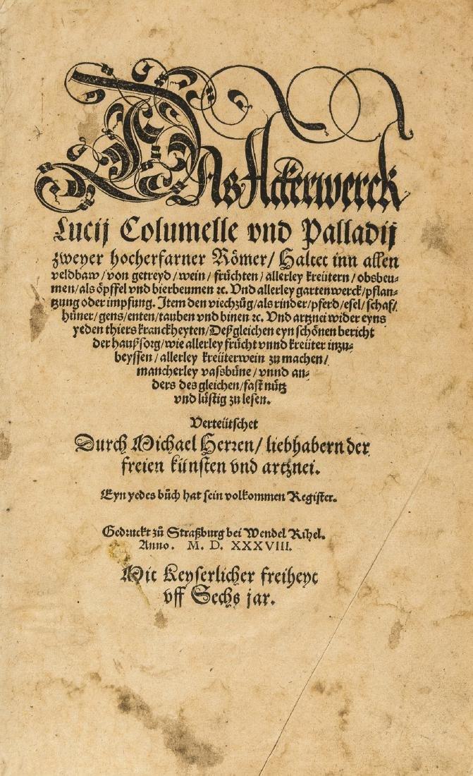 Columella (Lucius Junius Moderatus) Das - 2