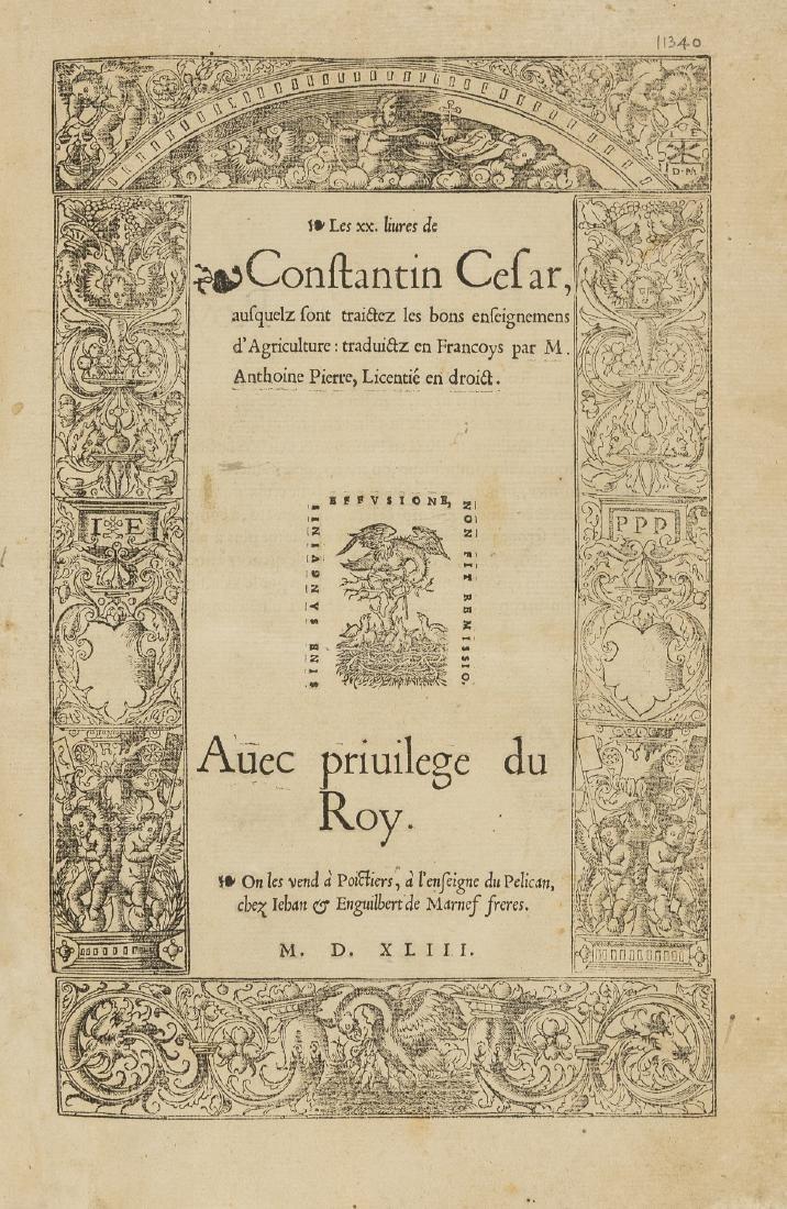 Cesar (Constantin) Les XX livres de Constantin Cesar,
