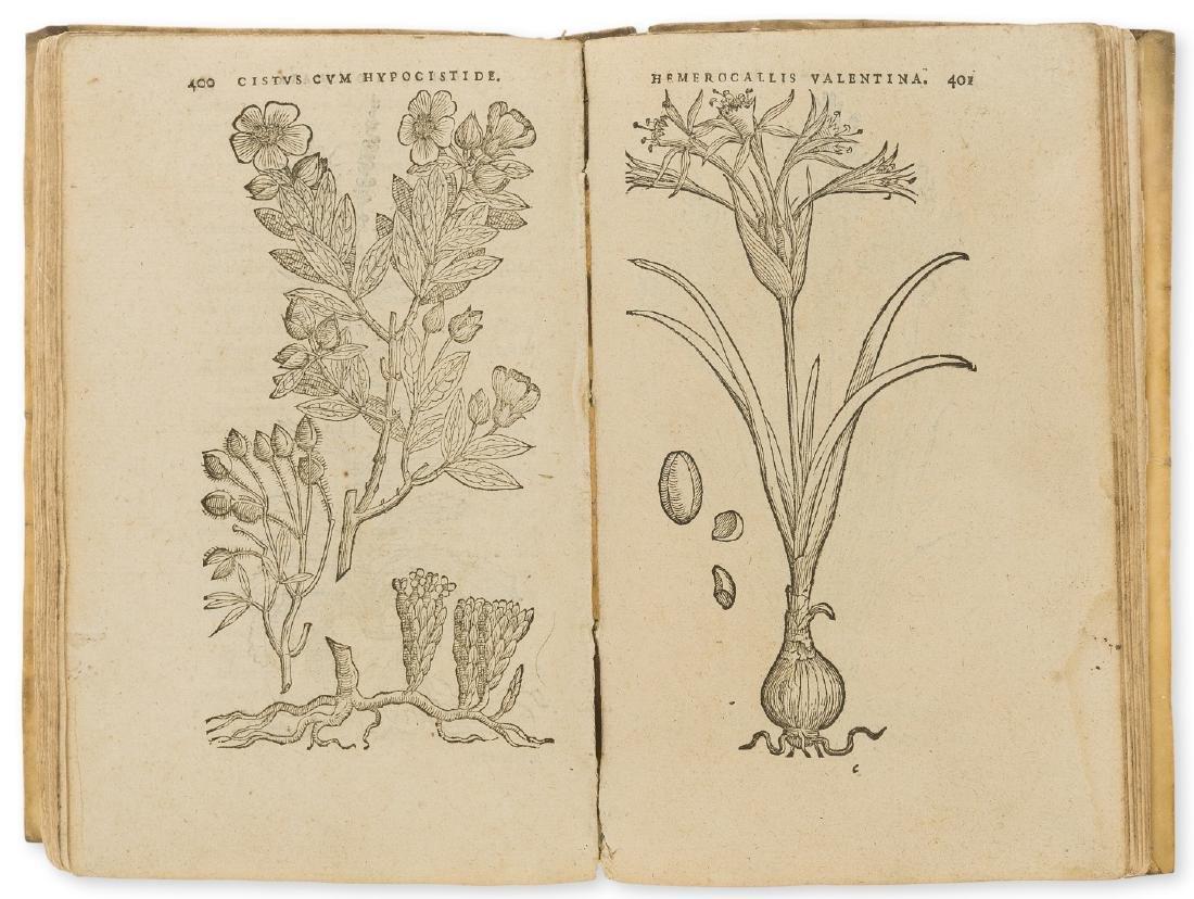 Dodoens (Rembert) Purgantium aliarumque eo facientium,