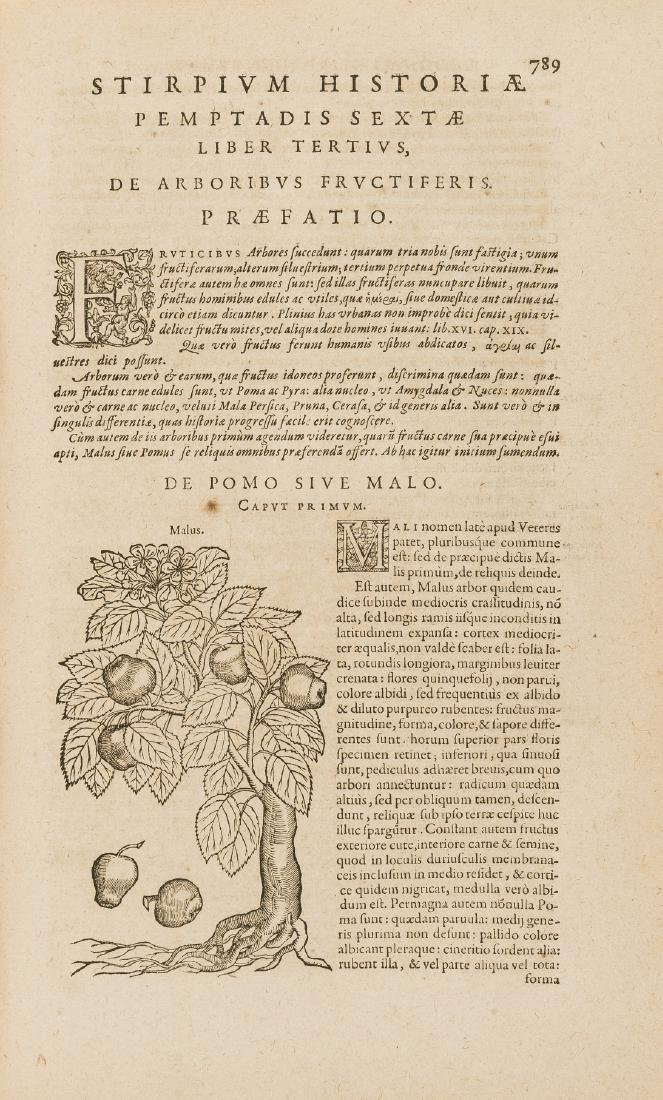 Herbal.- Dodoens (Rembert) Stirpium historiae pemptades - 2