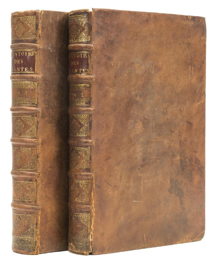 Dalechamps (Jacques) Histoire Generale des Plantes, 2