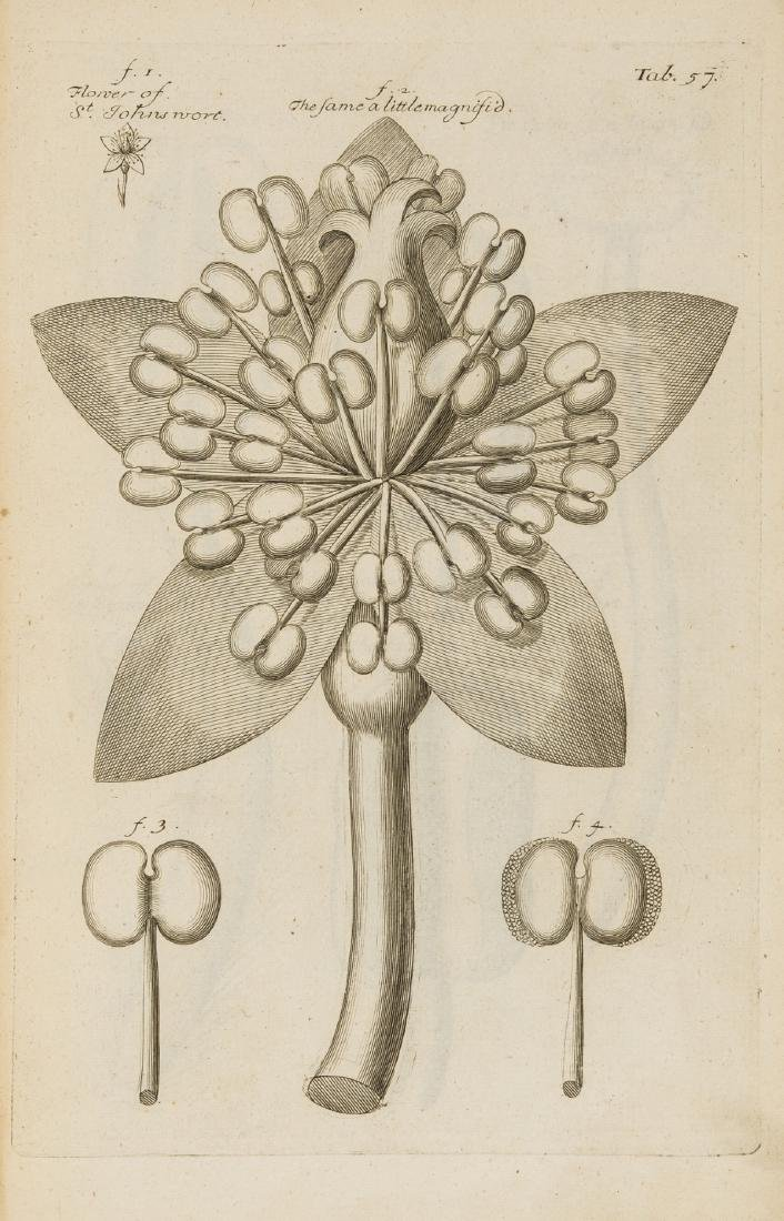 Grew (Nehemiah) The Anatomy of Plants, first collected - 2