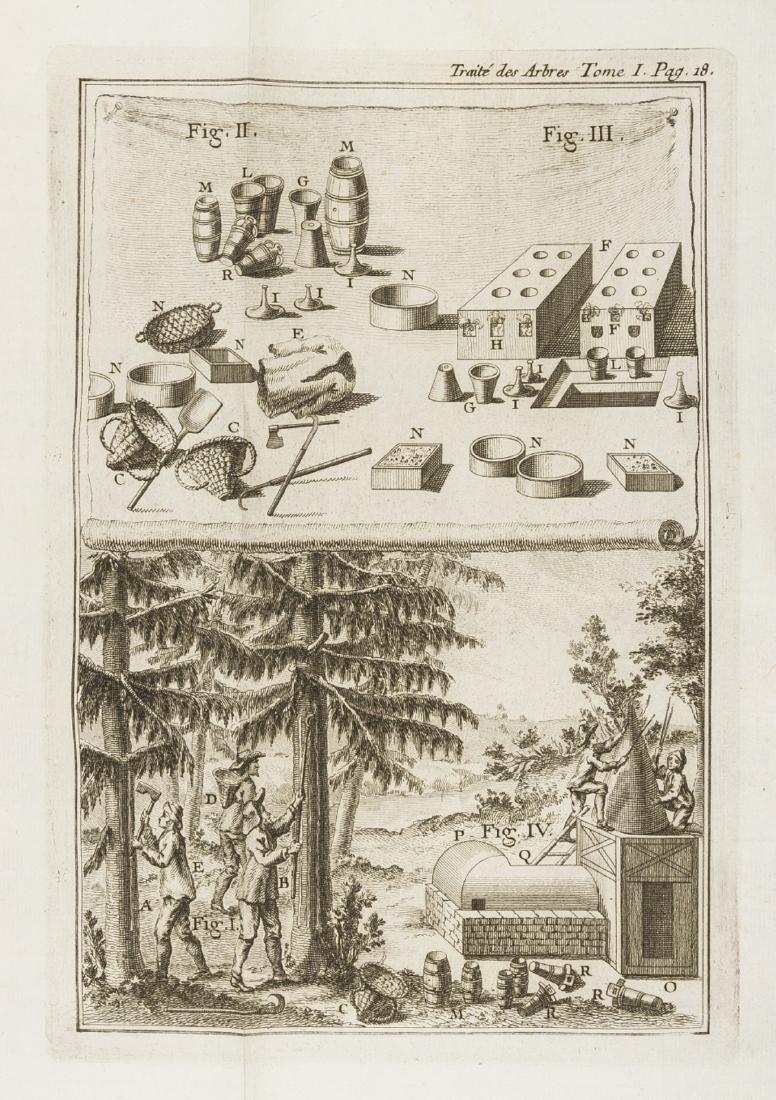 Trees.- Duhamel du Monceau (Henri Louis) Traité