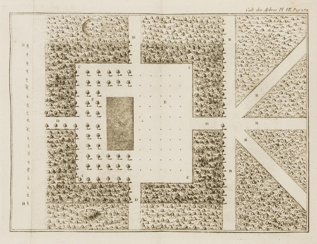 Trees.- Duhamel du Monceau (Henri Louis) La Physique