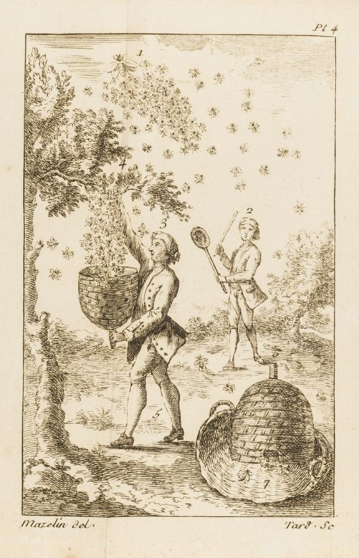 Bees.- Simon (Jean B.) Le Gouvernement Admirable; ou la