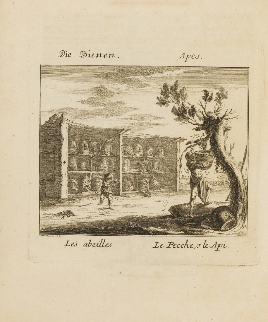 Trades.- Meil (Johann Wilhelm) Spectaculum Naturae &