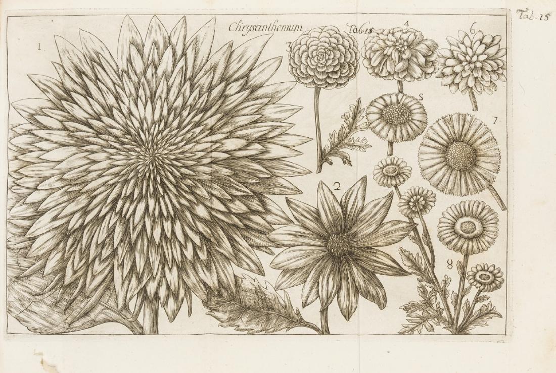 Arena (Filippo) La Natura, e Cultura dei Fiori, 2 vol.,