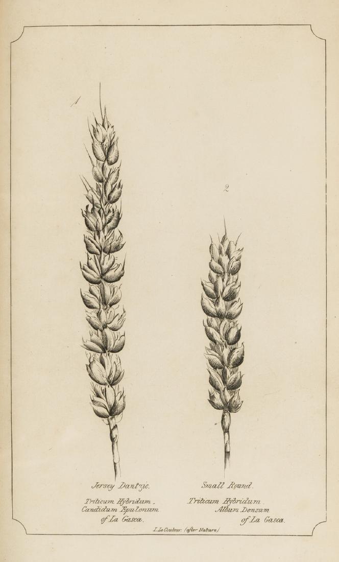 Wheat.- Le Couteur (John) On the Varieties, Properties