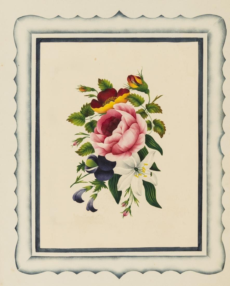 English School (19th century) An album of 25 botanical