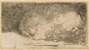 Rembrandt van Rijn (1606-1669) A Sleeping Puppy,