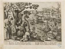 Birds.- Collaert II (Jan) Four plates from 'Venationes