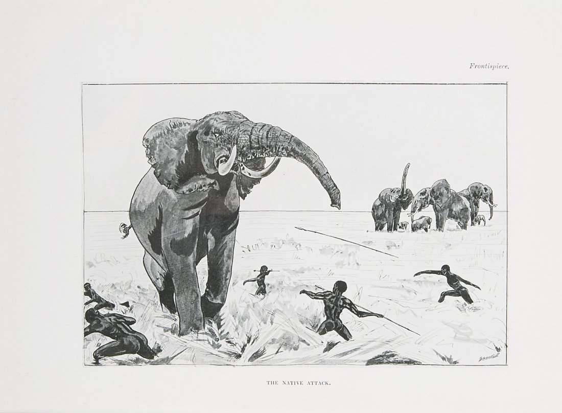 Africa.- Bell (W.D.M.), The Wanderings of an Elephant