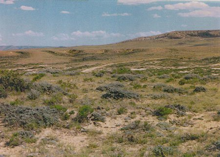 2025: WYOMING 40 AC~OLD CATTLE RANCH $197/MO.~INVEST