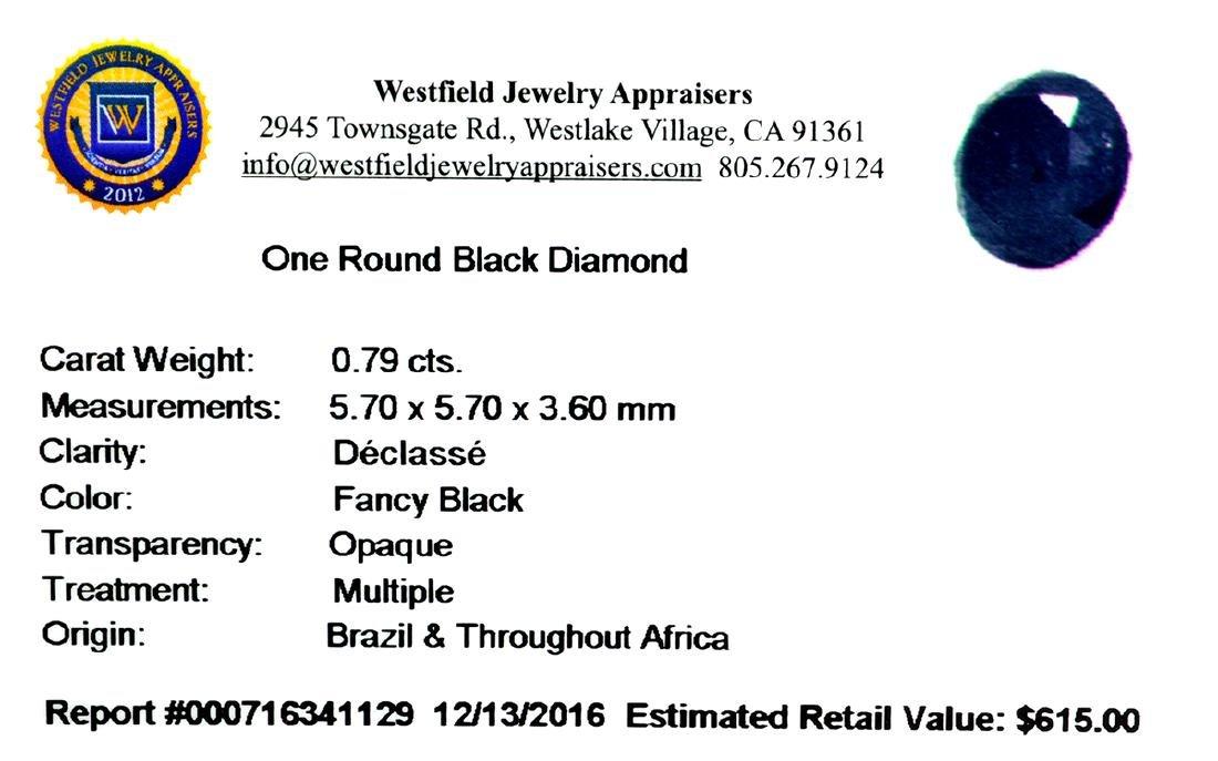 APP: 0.6k 0.79CT Round Cut Black Diamond Gemstone - 2