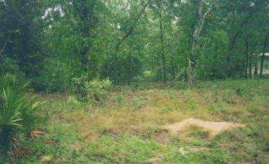 449: Putnam FL GORGEOUS Vacation Hideaway NR~INVEST