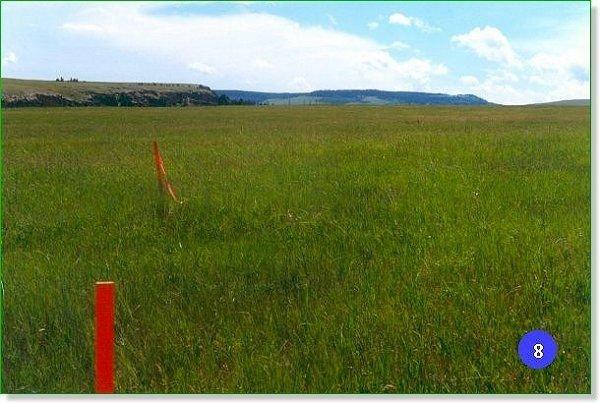 1312: MONTANA RANCHLAND 20 AC ROLLING GRASSLANDS