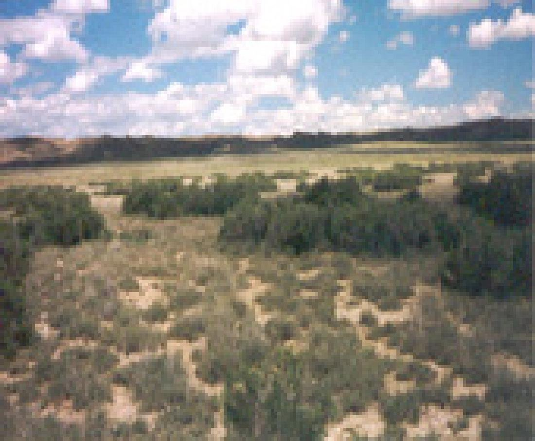GovernmentAuction.com WY LAND, 40 AC., SWEETWATER, - 6