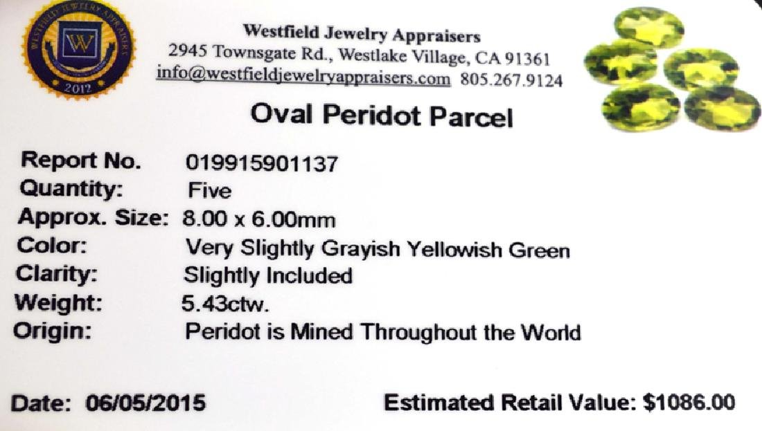 APP: 1.1k 5.43CT Oval Cut Green Peridot Parcel - 2