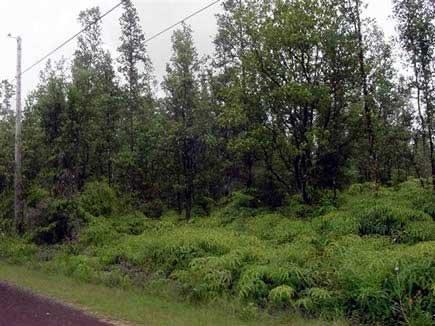1008: GOV: HI LAND Nanawale Estates EZ TERMS $319/mo
