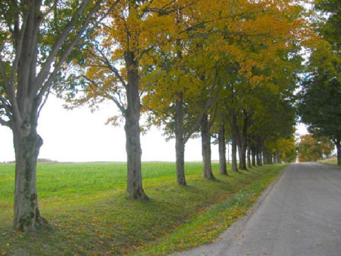 79 Acre Beautiful Canada Property