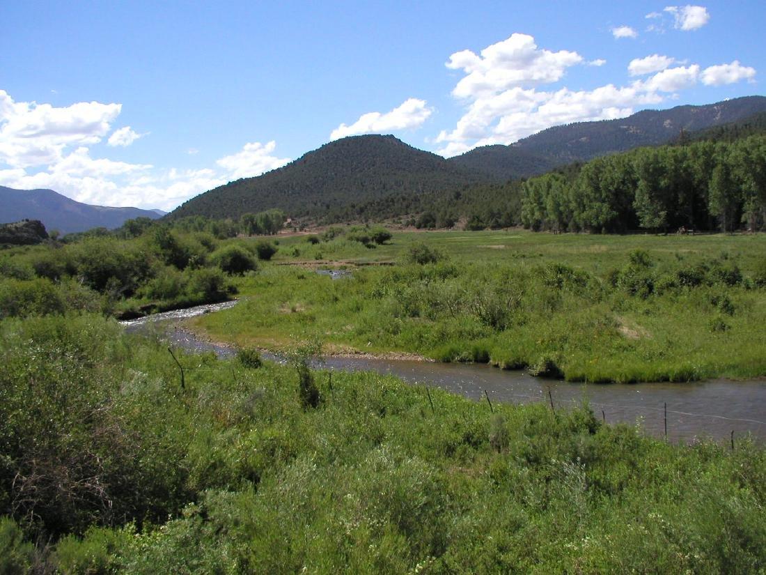 5 Acre Spetacular Colorado Assume Foreclosure!