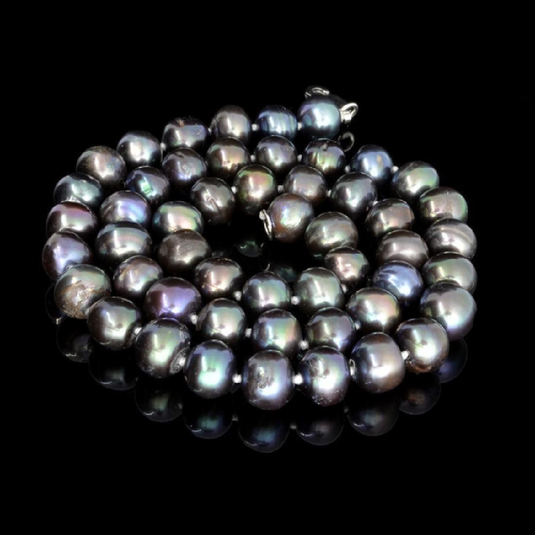 APP: 2k 16'' Purple Round Cultured Freshwater Pearl