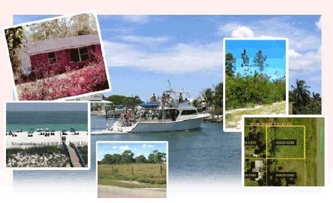 GovernmentAuction.com FL LAND, 1.25 AC., HUNTERS