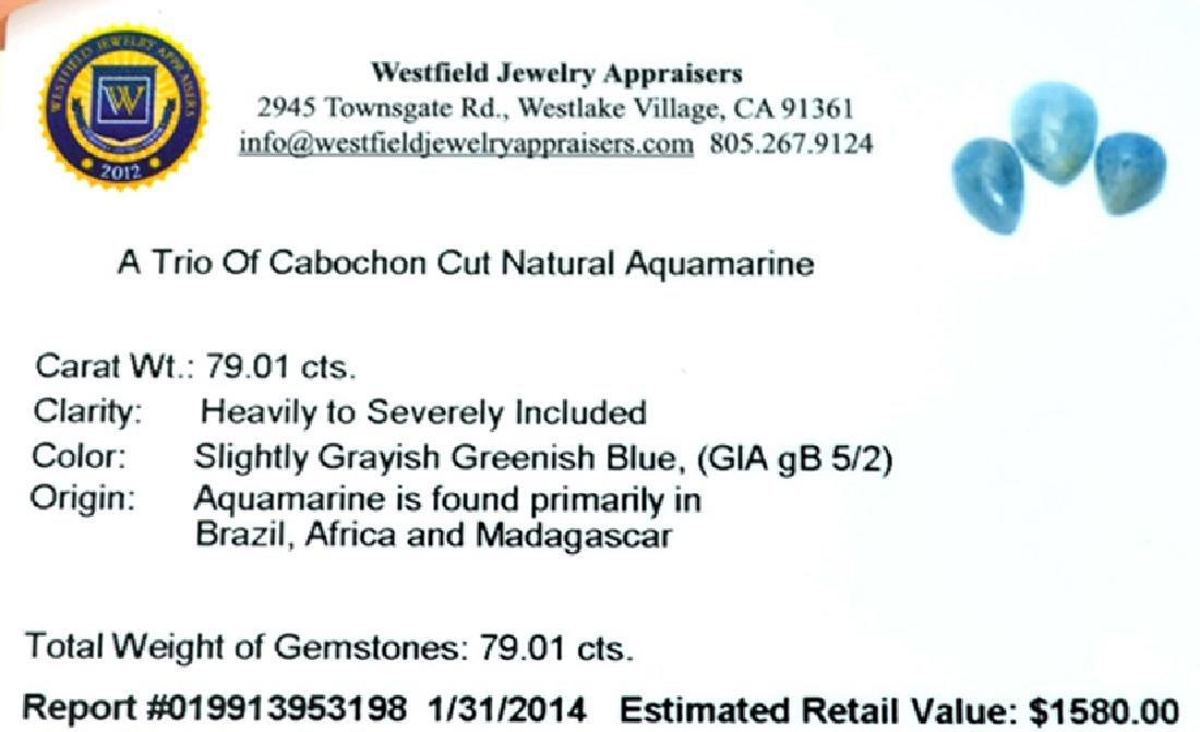 APP: 1.6k 79.01CT Oval Cut Cabochon Natural Aquamarine - 2
