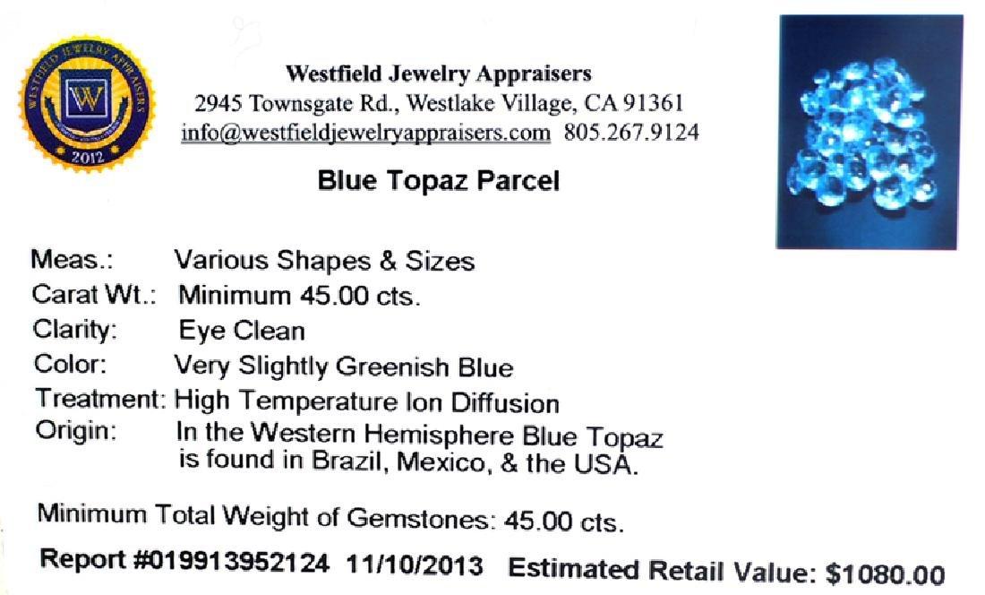 APP: 1.1k 45.00CT Blue Topaz Parcel - 2
