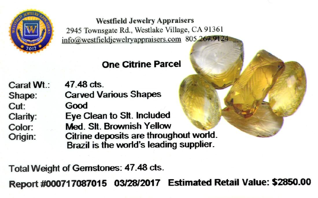 APP: 2.8k 47.48CT Carved Various Shapes Citrine Parcel - 2