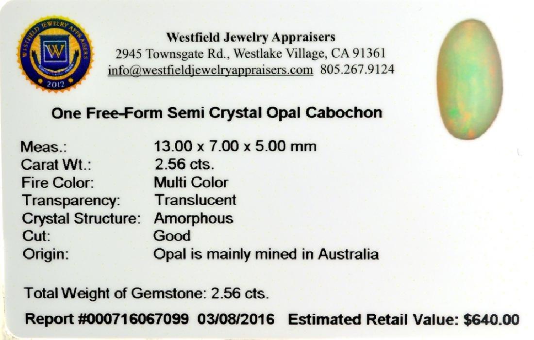 APP: 0.6k 2.56CT Free-Form Cabochon Multi Color Semi - 2