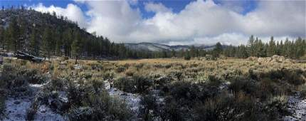 STUNNING CA LAND, 2.5 ACRES! EXCELLENT INVESTMENT! TAKE