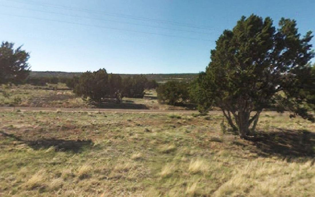 INCREDIBLE ARIZONA LAND! 10 ACRES IN APACHE COUNTY!