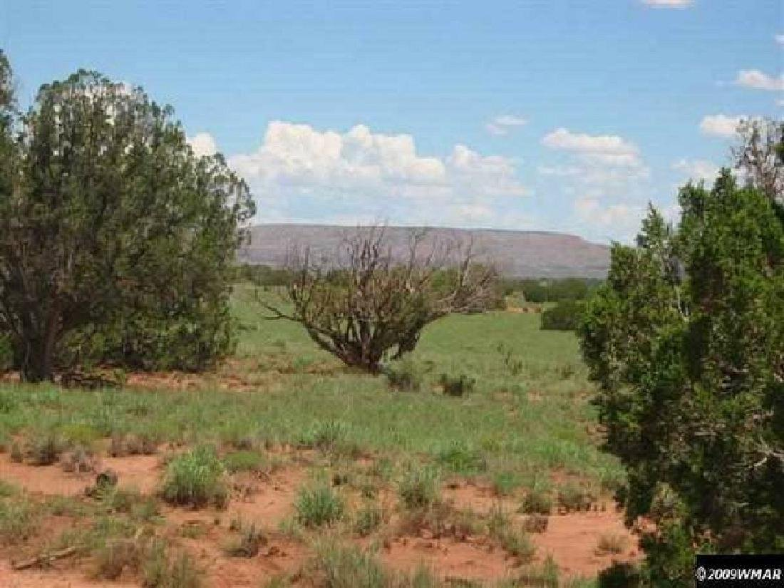 INCREDIBLE ARIZONA LAND! 10 ACRES IN APACHE COUNTY! - 2