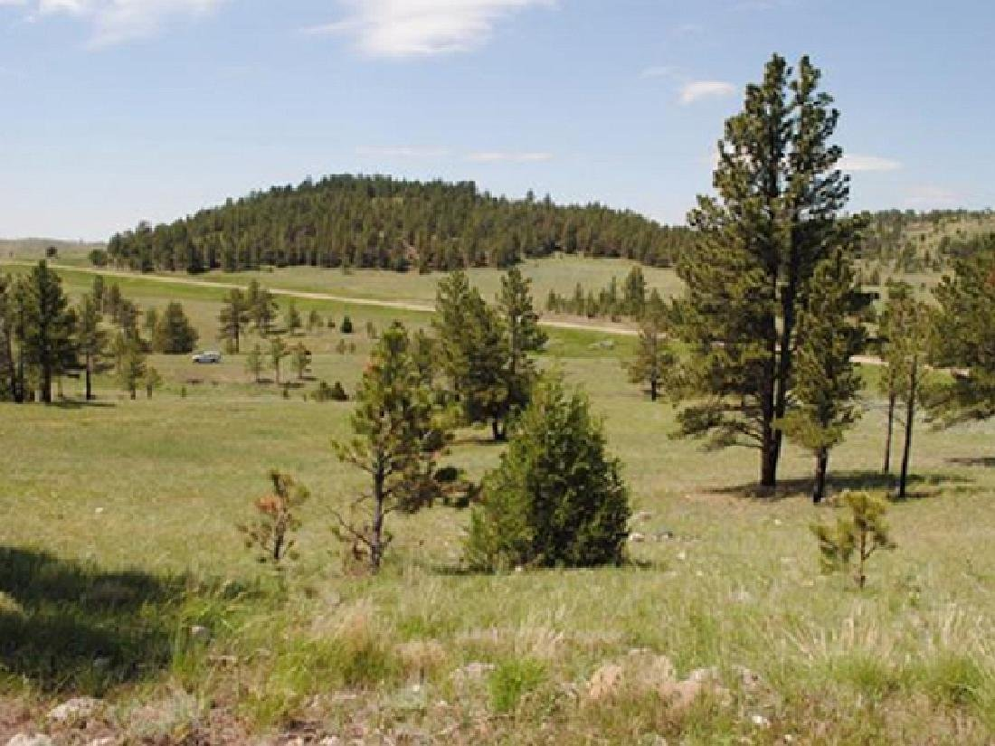 TAKE OVER PAYMENTS! BEAUTIFUL WY LAND! 40 AC. IN - 3
