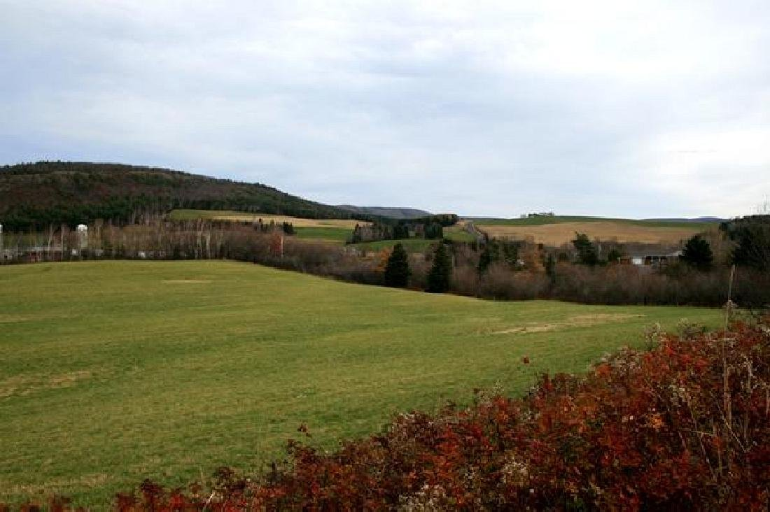 STUNNING CANADA LAND! LARGE 150 ACRES IN ONTARIO!