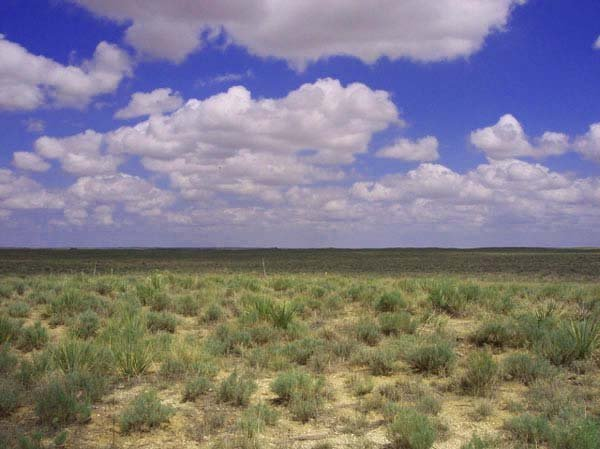 1682: GOV: CO LAND, 40 AC., RESERVOIR, SCENIC, STR SALE - 4