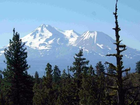 6004: GOV: CA LAND, MOUNT SHASTA, B&A $169/mo