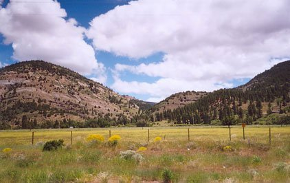 35: GOV: OR LAND, 20 AC. KLAMATH COUNTY,B&A $189/mo